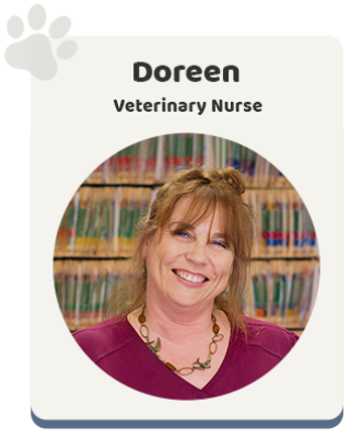 Windsor Animal Clinic - Veterinary Nurse Doreen