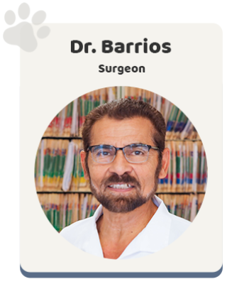Windsor Animal Clinic - Dr Barrios